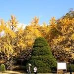 京都府立植物園Kyoto Botanical Garden