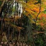 石峯寺Sekihou-ji Temple