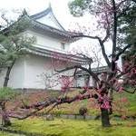 二条城〈1〉Nijo-jo Castle