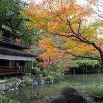 京都御苑Kyoto Gyoen National Garden