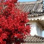 田辺城Tanabe Castle'Bugaku Castle'
