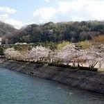 宇治川・中の島Ujigawa River