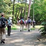 六甲森林浴の道・再度公園を歩く ハイクファミリー8月例会