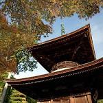 常寂光寺【3】Jojakko-ji Temple