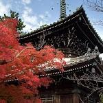 清涼寺【3】Seiryo-ji Temple