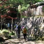 4つの峠を越えて日野から石山へ 京都ハイクファミリー例会