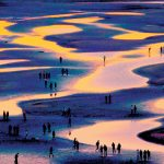 平和が育んだ多彩な光景 石浦秋代三さん個展、14日から中京区・AMSギャラリー2