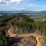 八幡市・男山ソーラー 計画行き詰まり 府指導で林地開発申請の必要も/共産党「土地買収の必要ない」