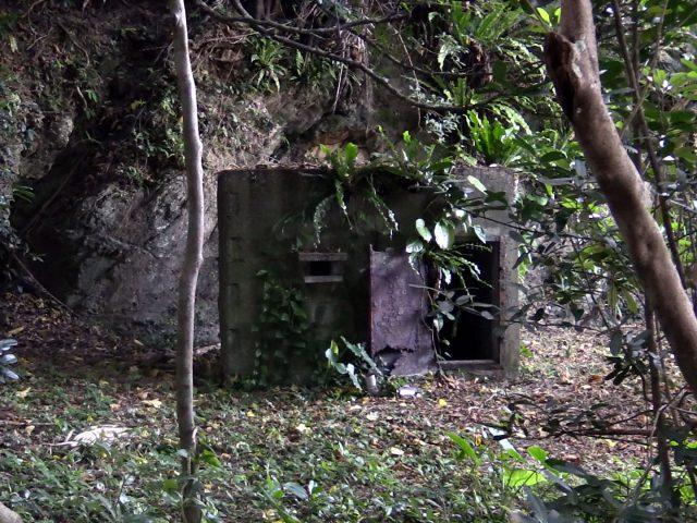 法によって監禁された精神障害者 ドキュメンタリー『夜明け前のうた~消された沖縄の障害者』 京都シネマで4月22日まで